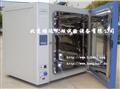 高温烘箱DHG-9030A